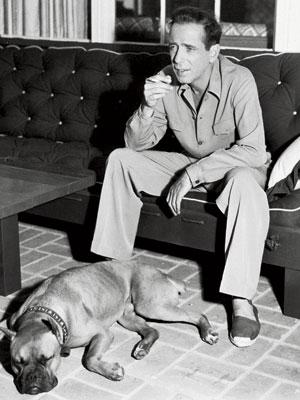 humphrey bigart wearing alpargatas-espardrilles next to a sleeping dog