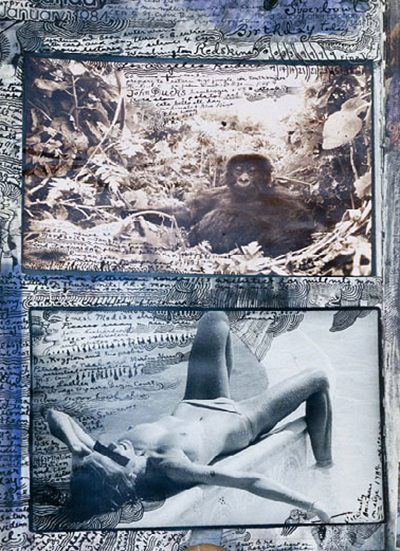 Peter Beard collage mokey and topless woman