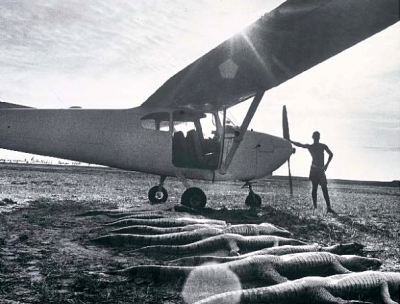 Peter Beard cocodrile death bodies lined up next to an airplane