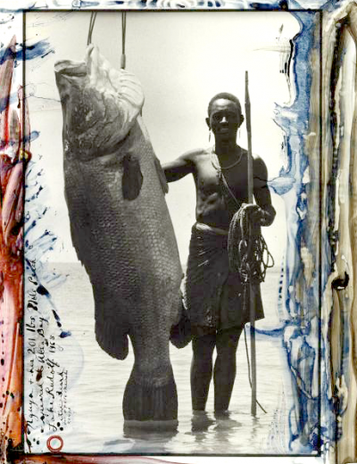 trophy fish peter beard