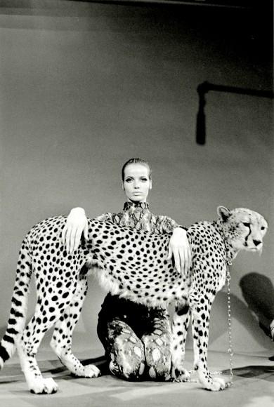 Veruschka posing wit a cheetah