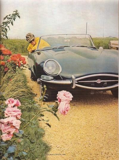 jaguar e type on a flower garden