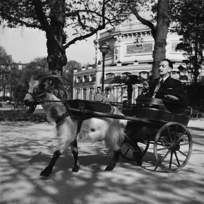 1950's Salvador Dali