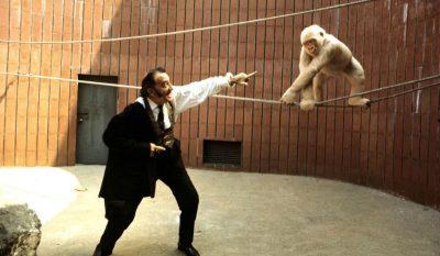 SALVADOR DALI with albino gorilla at barcelona zoo