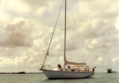 bogard At Hopetown, Bahamas, February 1994