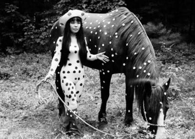 yaoyi+kusama and a polka dor horse new york 60s