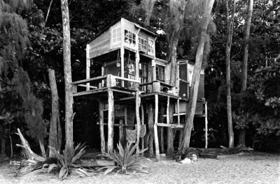 5_Taylor_camp_hawaii_hippy_treehouse
