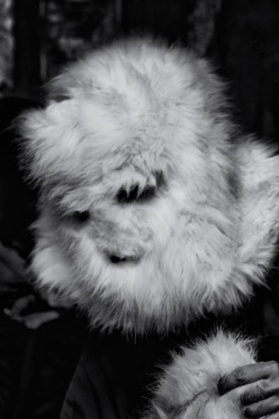 foto del estudio de la artista carmen la griega del fotografo Barte, disfraz reina blanca